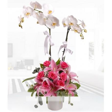 Orkide ve lilyum aranjmanı