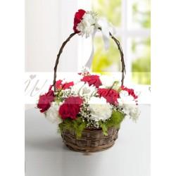 Kırmızı Beyaz Karanfil Sepeti